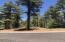2501 Pinegrass Road, Show Low, AZ 85901