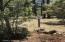 2460 W Whispering Springs, Show Low, AZ 85901