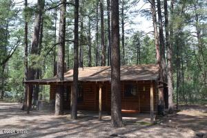3051 Antelope Trail, Pinetop, AZ 85935