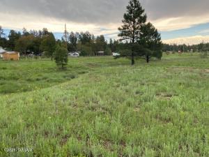 2800 Evergreen Drive, Show Low, AZ 85901
