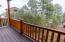 2320 N Cottage Trail, C4, Show Low, AZ 85901