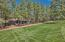7223 Buck Springs Road, Pinetop, AZ 85935