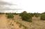 20 acres County Rd 5139, Concho, AZ 85924
