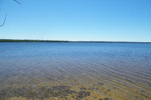 MLS 313390 - 15817  PARADISE LAKE Road, Carp Lake, MI