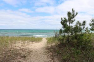 MLS 315742 - 15462  Summer Lane, Ocqueoc, MI