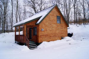 MLS 322940 - 2321  Cabin Cove , Gaylord, MI
