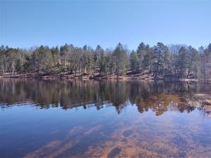 MLS 322842 - 11480  Lake Emma Road, Hawks, MI