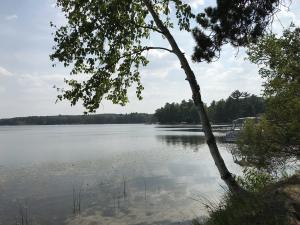 MLS 324221 - 3585  Twin Lakes Drive, Lewiston, MI