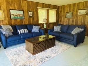 MLS 324253 - 33004 W Birch Shores Drive, Trout Lake, MI