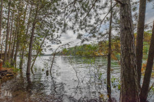 MLS 324833 - 5980  Beach Road, Johannesburg, MI