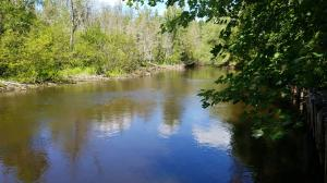 MLS 325254 - 1325  Ausable River Trail, Roscommon, MI