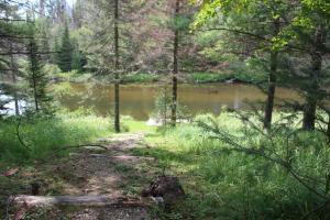 MLS 325645 - 1561  Speckled Trout Trail, Grayling, MI